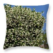 Confederate Jasmine Throw Pillow
