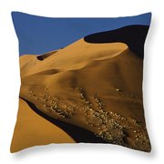 Contours Of Sossusvlei Throw Pillow