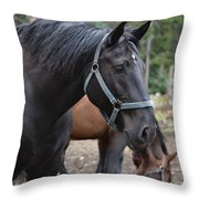 Cooke City Horses Throw Pillow