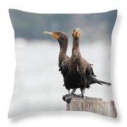 Cormorants Port Jefferson New York Throw Pillow