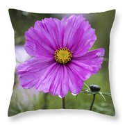 Cosmos Flower Throw Pillow