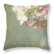 Country Charm Throw Pillow