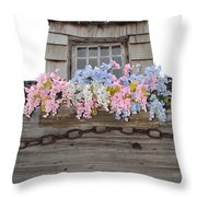 Country Window Throw Pillow