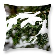 Country Winter 10 Throw Pillow