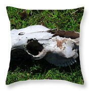 Cow Skull In A Field Throw Pillow