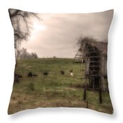Cows In A Field By A Barn Throw Pillow