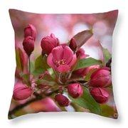 Crab Apple Blossom Throw Pillow