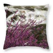 Cranberry Gulch Throw Pillow