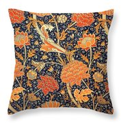 Cray Pattern Throw Pillow