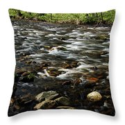 Creek, Smoky Mountains, Tennessee Throw Pillow