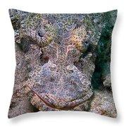 Crocodile Fish Throw Pillow by Joerg Lingnau