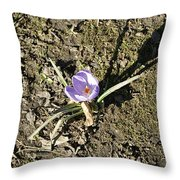 Crocus 1 Throw Pillow