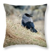 Crow In The Gras Throw Pillow