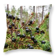 Crowberry Throw Pillow