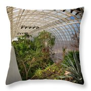 Crystal Bridge Throw Pillow