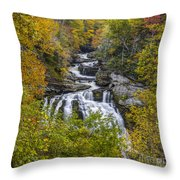 Cullasaja Falls In Autumn Throw Pillow