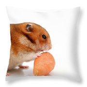 Curious Hamster 1 Throw Pillow