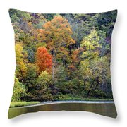 Current River Fall Throw Pillow