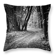 Curving Trail Entering Deciduous Forest Throw Pillow