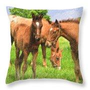 Cute Colts Throw Pillow