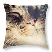 Cute Small Cat Portrait Throw Pillow