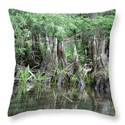 Cypress Knees  Throw Pillow