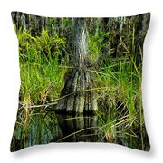 Cypress Tree Throw Pillow