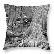 Cypress Trees I V Throw Pillow