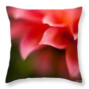 Dahlia Edges Throw Pillow