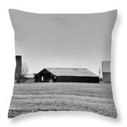 Dairy Farm In Dixon Throw Pillow