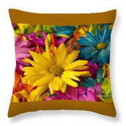 Daisies Petals Throw Pillow