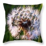 Dandelion In Nature Throw Pillow