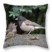 Dark-eyed Junco Mother And Baby Throw Pillow