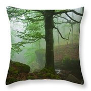 Dark Forest Throw Pillow by Evgeni Dinev
