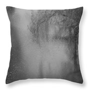 Day Of Harmony... Throw Pillow