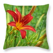 Daylily On Green Throw Pillow