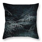 Deep In Woods Throw Pillow