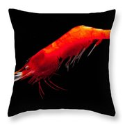 Deep Water Shrimp Throw Pillow