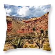 Desert Cactus Throw Pillow
