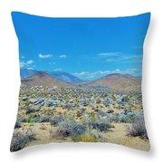 Desert Comfort Throw Pillow