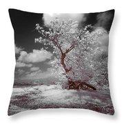 Desertic Tree Throw Pillow