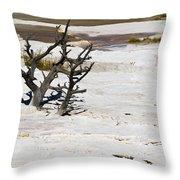 Desolate Throw Pillow