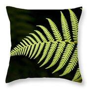 Detail Of Asian Rain Forest Ferns Throw Pillow