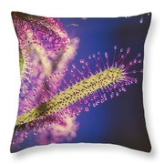 Dew Covered Tentacles Throw Pillow