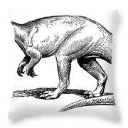 Dinosaur: Allosaurus Throw Pillow