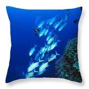 Diving Australia Throw Pillow