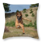 Dog Leaping Throw Pillow