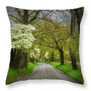 Dogwood Trail, Smoky Mountain, Tennessee Throw Pillow
