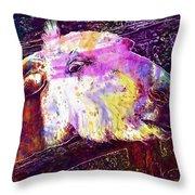 Donkey Livestock Beast Of Burden  Throw Pillow