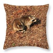 Green Heron Babies Throw Pillow